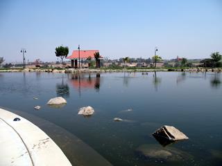 Barney Schwartz Park Pond