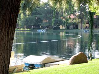 Pinewood Lakes HOA