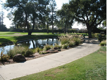 San Jose Country Club Pond